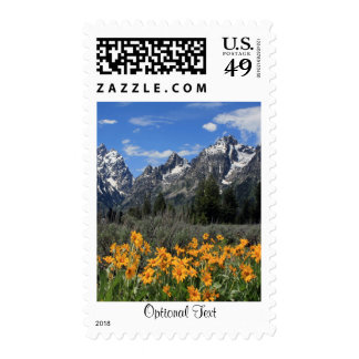 Grand Tetons with Yellow Flowers Postage