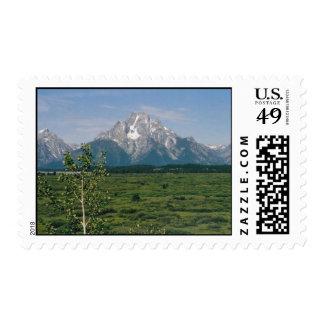 Grand Tetons- Wyoming Postage Stamp
