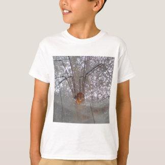 Grandaddy Longlegs T-Shirt