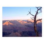 GrandCanyon-View#1 Postcard