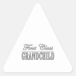 Grandchildren First Class Grandchild Triangle Sticker