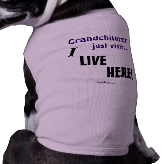 Grandchildren just visit..., I LIVE HERE! Dog Clothes