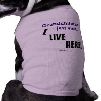 Grandchildren just visit..., I LIVE HERE! Shirt
