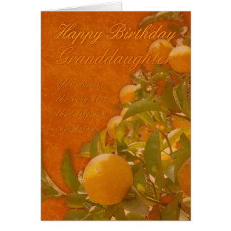 Granddaughter Happy Birthday Spanish Orange Tree, Greeting Card