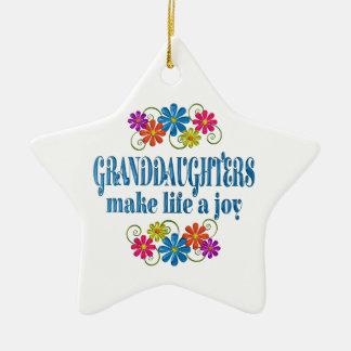 Granddaughter Joy Ceramic Ornament