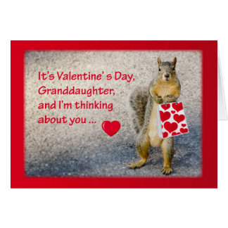 Granddaughter Valentine's Day, Squirrel Card