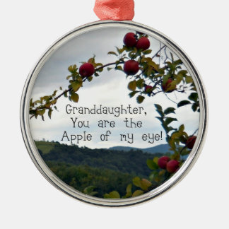 Granddaughter, You are the Apple of my eye! Metal Ornament