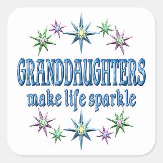 Granddaughters Sparkle Sticker