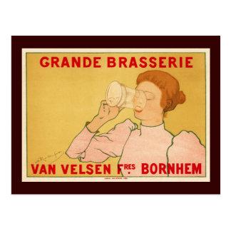 Grande Brasserie Van Velsen Postcard