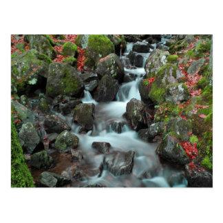 grande cascade tendon water fall and peace postcard