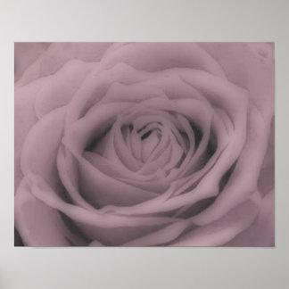 Grande-Rosa Póster