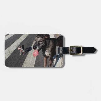Grande y alto, foto de great dane y perros de la c etiquetas para maletas