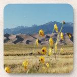 Grandes dunas y flores de arena posavaso