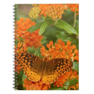 Grandes Fritillaries Spangled en Milkweed de la Cuaderno