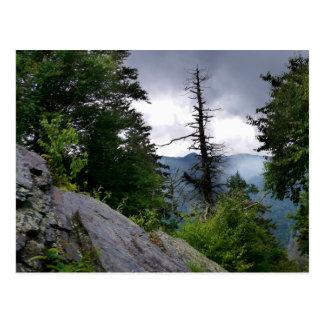 Grandes Montañas Humeantes de los tops de chimenea Tarjetas Postales