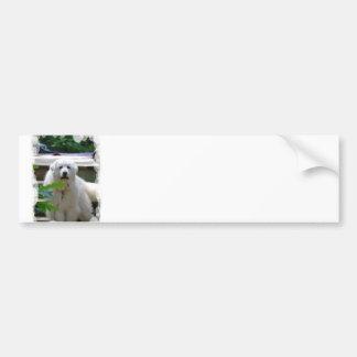 Grandes pegatinas para el parachoques blancas del  pegatina para auto