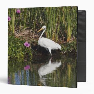 """Grandes pescados de la caza del Egret en pantano Carpeta 1 1/2"""""""