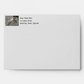 Grandes saludos del Egret (Ardea alba) OBX Outer B Sobres