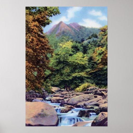 Grandes tops de chimenea de las montañas de Smokey Poster