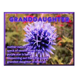 Grandest Granddaughter of All Postcard
