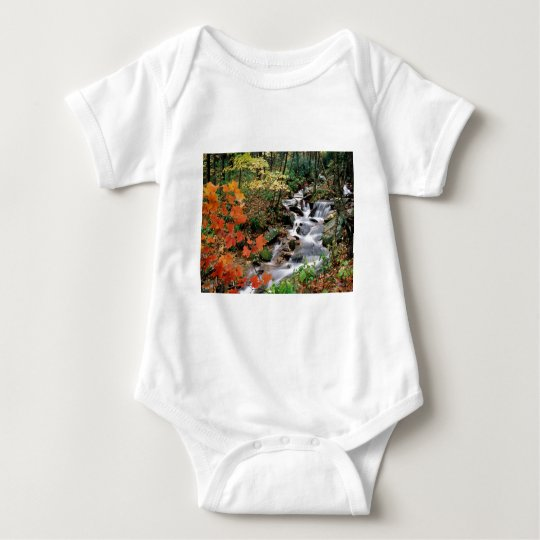 Grandfather Mountain Falls Baby Bodysuit