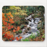Grandfather Mountain Falls Mouse Pad