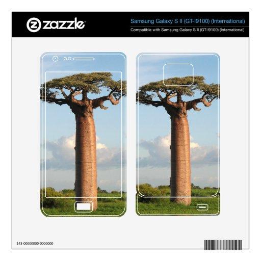 Grandidier's Baobab Madagascar Samsung Galaxy S II Skins