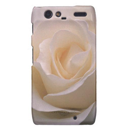 Grandiflora Rose Mount Hood Motorola Droid RAZR Case