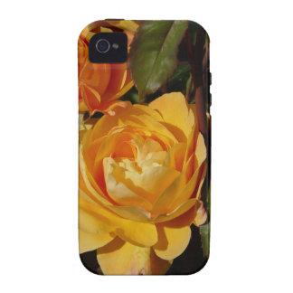 Grandiflora Rose Strike It Rich iPhone 4/4S Covers