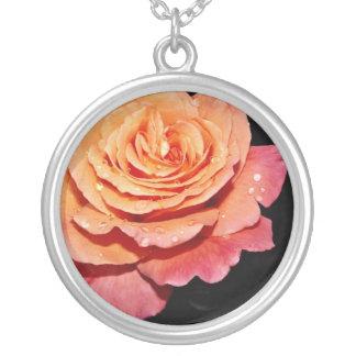Grandiflora Rose 'Sundowner' White flowers Jewelry