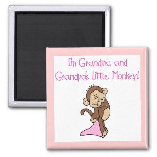 Grandma and Grandpa s Monkey - Pink Magnets
