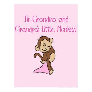 Grandma and Grandpa's Monkey - Pink Postcard