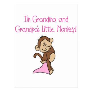 Grandma and Grandpa's Monkey - Pink Postcards
