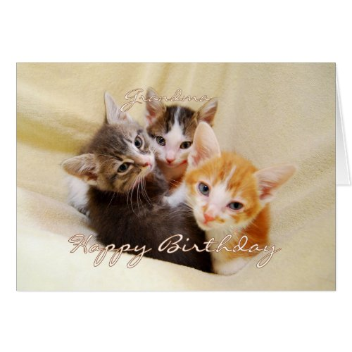 Grandma Happy Birthday Trio of Kittens Card