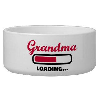 Grandma loading pet food bowls