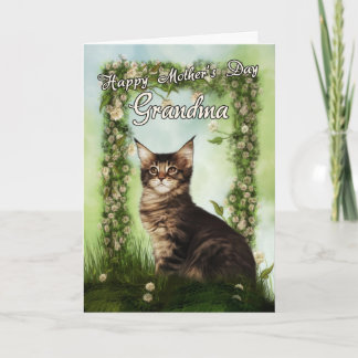 Grandma Mother's Day Card With Cute Cat