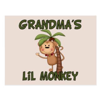 Grandma s Little Monkey Postcard