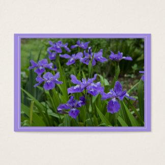Grandma's Cali Iris Gift Tag