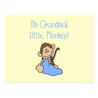 Grandma's Little Monkey - Blue Tshirts and Gifts Postcard
