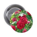 Grandma's Rose Bush Pinback Button