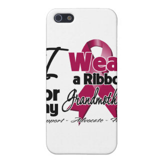 Grandmother - Multiple Myeloma Ribbon iPhone 5 Covers