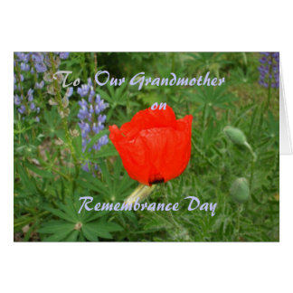 Grandmother Remembrance Day- November+11th Poppy Greeting Cards