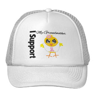 Grandmother Support Breast Cancer Mesh Hat