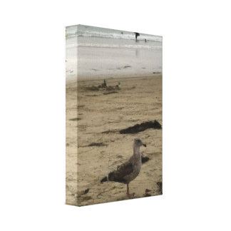 Grandpa Gull on Wrapped Canvas