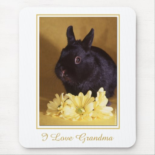 Grandparent's Day - Bunny and Daisies Mousepad