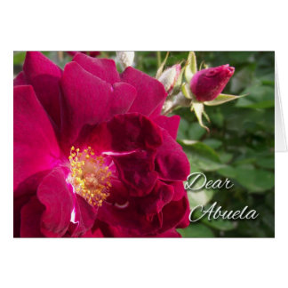 Grandparents Day for Abuela, Red Rose and Rose Bud Card