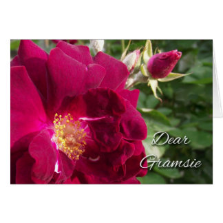 Grandparents Day for Gramsie, Red Rose and Bud Card