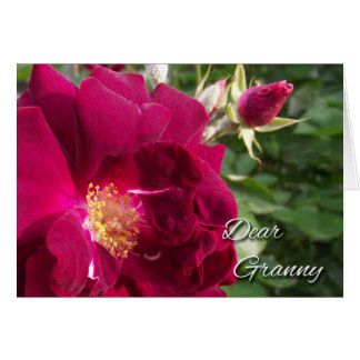 Grandparents Day for Granny, Red Rose and Bud Card