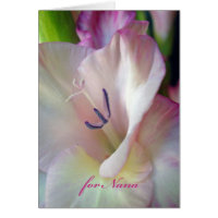 Grandparents Day for Nana, Pink Gladiolus Photo Card
