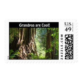 Grandpas are Cool! postage stamps Redwood Trees